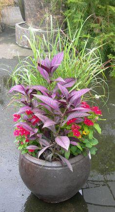 416d7857bd2f50c9a1f660746fe02582--garden-birds-garden-pots.jpg 736×1,355 pixels