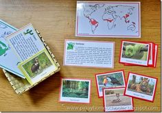 Animal Habitat cards. Use with Apologia Zoology for #homeschool science http://shop.apologia.com/63-zoology-1