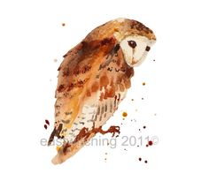 OWL Watercolour Art Print 8x10inches  - Eastwitchings Own