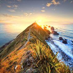 Sunrise over Nugget Point Otago, New Zealand #pavelife #vacation #travel