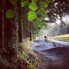 New feature on the Marin Trail near Betws y Coed About 30 minutes drive from our #accommodation at Cadair View Lodge www.cadairviewlodge.co.uk #Snowdonia #mtb