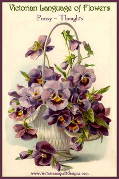Victorian Language of Flowers - Pansy