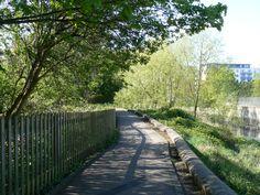Sidewalk, Park, Side Walkway, Walkway, Parks, Walkways, Pavement