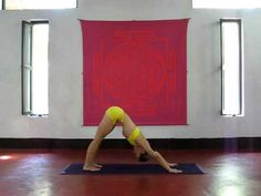 ASHTANGA YOGA    Kino Macgregor at PURPLE VALLEY yoga retreat Goa,India www.yogagoa.com