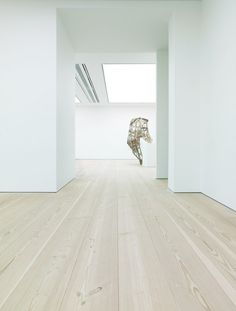 Solid wooden flooring at Saatchi Gallery - Douglas by Dinesen