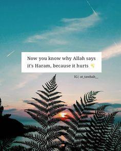 Sabr Islam, Allah Islam, Arabic Quotes, Islamic Quotes, Butterfly Quotes, Quotes Deep Feelings, Islam Facts, Religion, Quran Verses