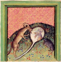 Detail of a miniature of the hedgehog reproaching the goat for his vanity; from Ulrich von Pottenstein, Spiegel der Weisheit, Austria (Salzburg), c. 1430