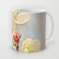 Almond Blossoms in the Wind Mug by Around the Island Photography