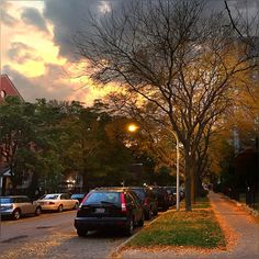 Living through October is the best thing, totally put smile on my fact this evening when i was heading for violin session :) #Autumn #Colors #Golden #Evening #Pretty #Chicago #Winter #Edge #Seasons #Beautiful #Urban #Street #Chicago #ChiTown #October2014