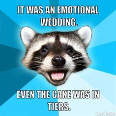 Wedding Meme Lame Jokes Nerd Jokes Nerd Humor Dog Jokes Jw