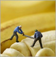 Holy Mackerel (UK) Ltd :: Banana splitters £2.15