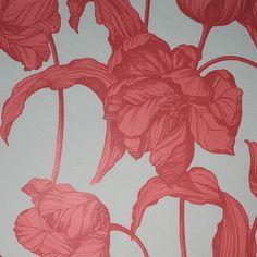 Harem Tulips