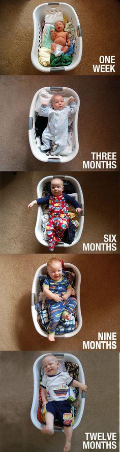 Laundry Basket Grown Chart