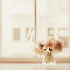 I like the flower, the color, and the vase.