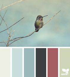 { creature color } image via: @amandarimmerphotography