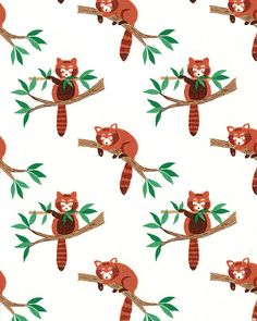Min Shan - Red Panda Tree - Quilt Fabrics from www.eQuilter.com