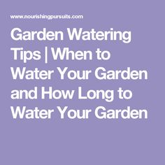 Garden Watering Tips   When to Water Your Garden and How Long to Water Your Garden