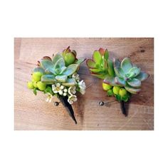 The Flower Lab · Succulent corsage and boutonniere found on Polyvore