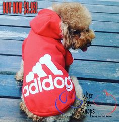 Pimp & Warm your Fur Baby! Go for looks and comfort at the same time! 20% OFF this weekend! BUY NOW! - https://www.uberpetshops.com/produ…/doggy-sweatshirt-hoodies LIMITED STOCK! #pimpmydog #petbling #dogs #awesomedogs