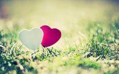 liefde-achtergrond-met-een-wit-en-rood-hartje-in-het-gras