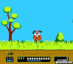 duck hunt! nintendo was ahhhmazing