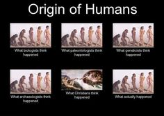 Correction: what SOME Christians think happened without evolution. Most of us regard evolution as a valid method of creation. Anti Religion, Les Religions, E Mc2, Demotivational Posters, Biologist, Charles Darwin, Thats The Way, Critical Thinking, Memes