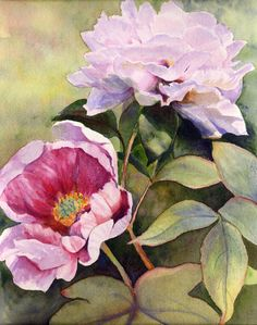 Fine Art Floral Print of original watercolor of Garden Peonies on museum-quality paper. Sara h Buell Dowling- easy #stylecure