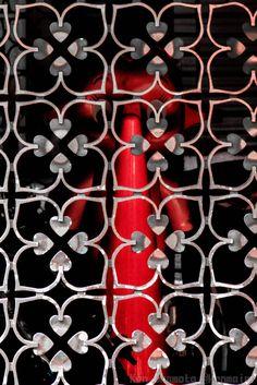 Captivity red
