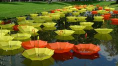 Just Sometimes by Luke Jerram: An installation of some 1000 umbrellas on a canal in Rotterdam. #Umbrellas #Luke_Jerram #Rotterdaym #Just_Sometimes