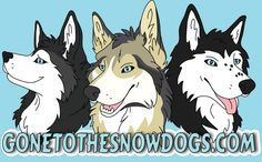 Gone to the Snow Dogs - Siberian Husky - Youtube GonetotheSnowDogs
