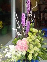 Shop hoa Binh Duong, hoa tuoi, Cùng xem các mẫu hoa giỏ tại: www.dienhoa360.comLiên hệ đặt hàng Hotline: 0988 903 205 - 0984 08 1332