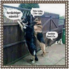 besuchen #laughing #lustigesding #fun #lustig #lachflash #funnypictures #witze #jokes #witzig #sprüchezumnachdenken