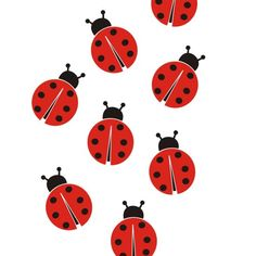 Ladybugs Wall Vinyl Decals Art Graphics Stickers