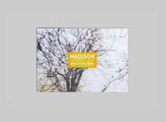 'Madison' by Loftex - hoyne property