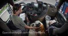 Volunteer Trucker Pet Transport Bruno Part 3