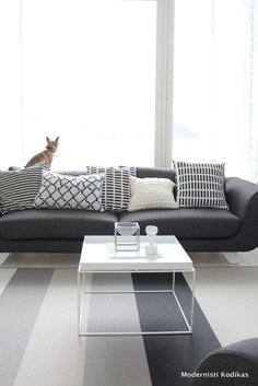 Grey - Black - White Nordic Living room