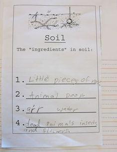 1000 images about 3rd grade sci soil on pinterest third for Soil 1st grade