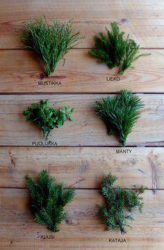 Christmas Diy, Christmas Wreaths, Christmas Decorations, Xmas, Diy Door, Beautiful Christmas, Branches, Flower Arrangements, Diy And Crafts