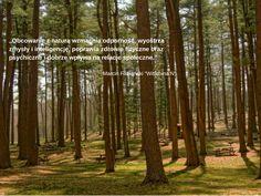 #natura, #zdrowie, #lifefactory