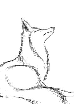 fox sketch practicing fox sketch by firerai things to draw in - fox sketch easy Cool Art Drawings, Cute Animal Drawings, Pencil Art Drawings, Animal Sketches, Art Drawings Sketches, Easy Nature Drawings, Tattoo Sketches, Fox Sketch, Fox Drawing