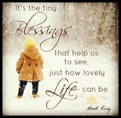It's the tiny blessings that help us to see just how lovely life can be. Tiny Blessings, Me Quotes, Funny Quotes, Quotable Quotes, Attitude Of Gratitude, Words Worth, I Am Grateful, Mothers Love, Meaningful Quotes