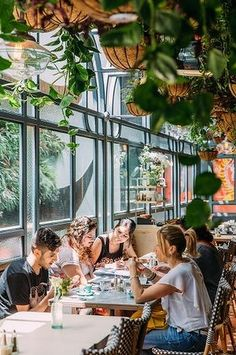 Just Open: Flower Child Cafe, Chatswood The Grounds Of Alexandria, Indoor Plants, Entrance, Fair Grounds, Archie, Studio, Children, Lakes, Flowers