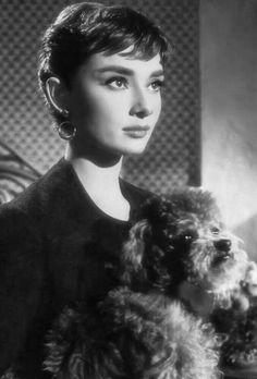 Audrey Hepburn in Sabrina Old Hollywood Stars, Hollywood Icons, Old Hollywood Glamour, Vintage Glamour, Classic Hollywood, Vintage Girls, Audrey Hepburn Inspired, Audrey Hepburn Photos, Audrey Hepburn Style