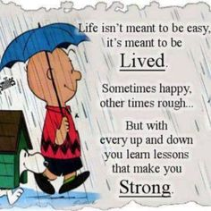 Life isn't meant to be easy…