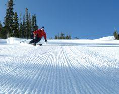 Skiing Corduroy Courtesy Tom Stillo