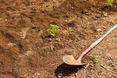 Topsoil Prices for 2015