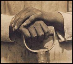 Tina Modotti,  'Mani sul badile'  1926,   Mexico
