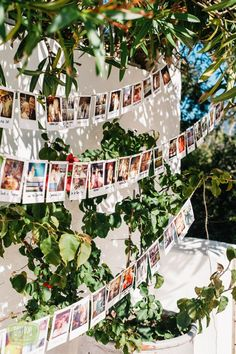 Spectacular The 6 greatest polaroid concepts in your marriage ceremony Ibiza Wedding Venues, Best Wedding Venues, Wedding Themes, Boho Wedding, Destination Wedding, Wedding Planning, Dream Wedding, Wedding Decorations, Crazy Wedding
