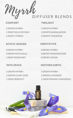 doTERRA Ginger Essential Oil Uses with Food and Diffuser Recipes Myrrh Essential Oil, Essential Oil Diffuser Blends, Doterra Essential Oils, Doterra Diffuser, Doterra Myrrh, Melaleuca, Diffuser Recipes, Aromatherapy Oils, Hacks