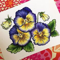 Finished coloring. Next is the background. Used copics, colored pencil, and a multiliner for fine details. My 1st time mixing media . . . #powerpoppy #pansies #flowers #coloring #papercraft #floral #copic #polychromos #digistamp #digitalstamp #violas